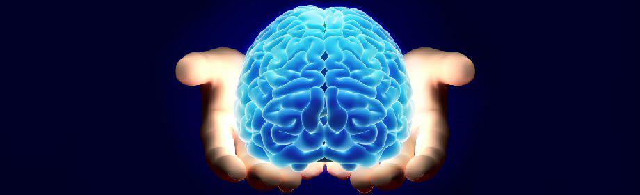 Hjerne i hænder