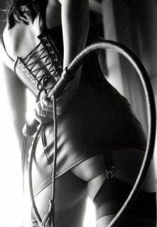 Bull Whip BDSM