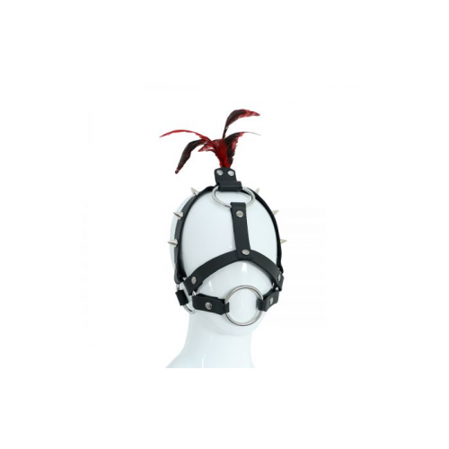 Leather Head Spiked Harness with Feather